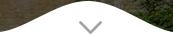banner-button